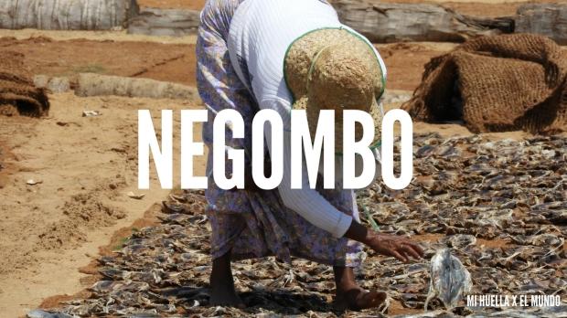 NEGOMBO (1)