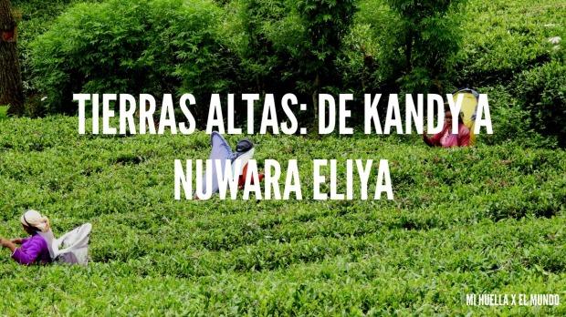 nuwara eliya (18)